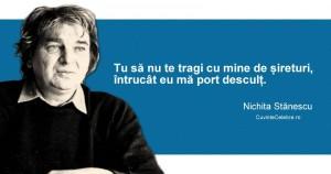 Citat-Nichita-Stănescu2
