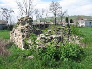 Ruine ale Curtii domnesti de la Hirlau