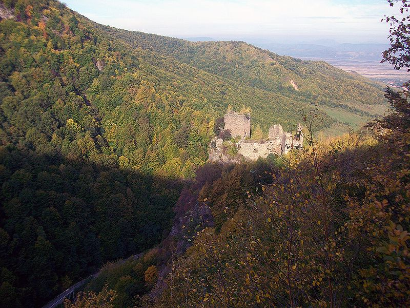 cetatea colt hunedoara