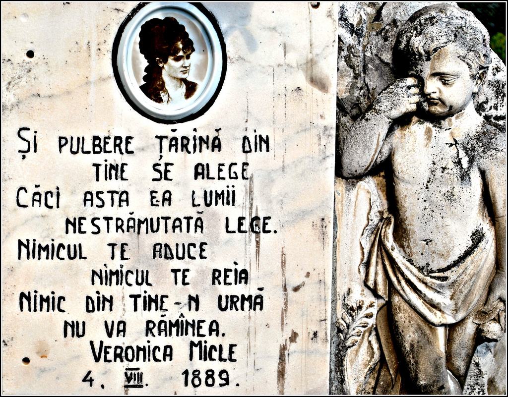 Mormant Veronica Micle