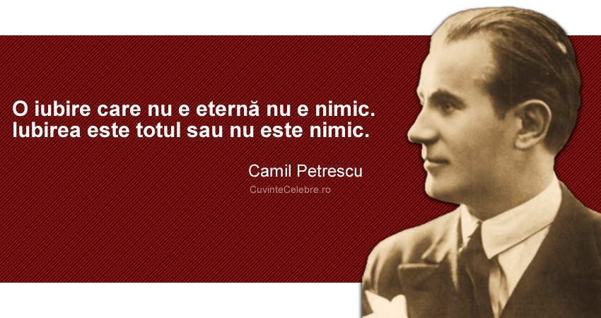 Citat-Camil-Petrescu